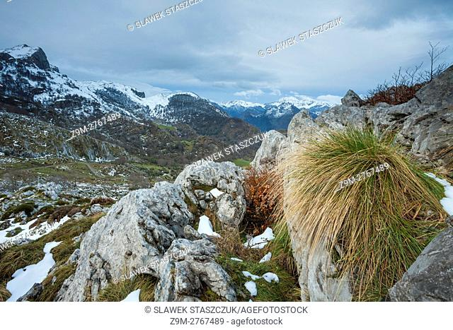 Spring morning in Picos de Europa National Park, Asturias, Spain
