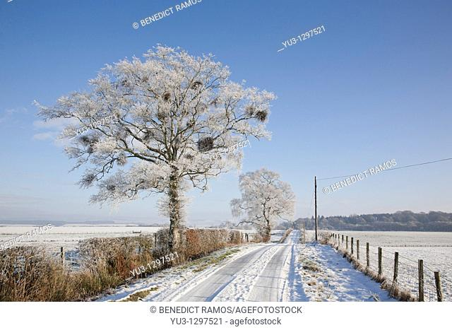 Country road in the snow, near Lochmaben, Dumfries and Galloway, Scotland, UK