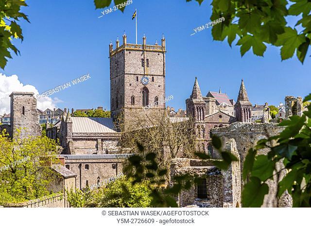St Davids Cathedral seen from Bishop'S Palace, Pembrokeshire Coast National Park, Pembrokeshire, Wales, United Kingdom, Europe