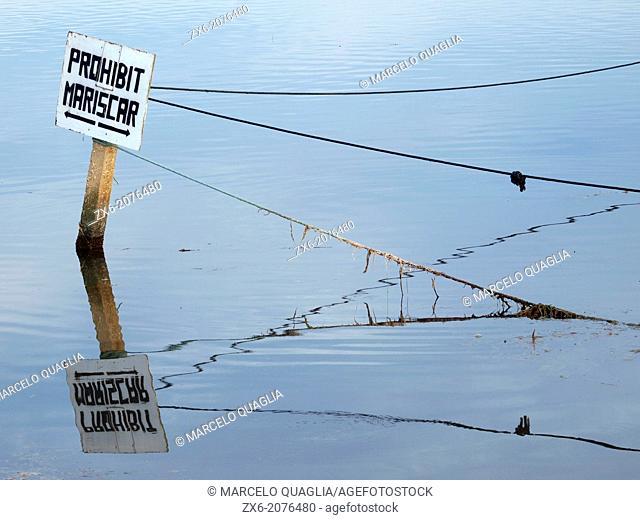 Mussel fishing forbidden sign at Alfacs Bay. Ebro River Delta Natural Park, Tarragona province, Catalonia, Spain