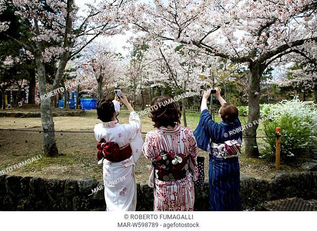 girls wearing yukata, kimono and taking picture with camera phone. Maruyama-koen park, Kyoto, Japan