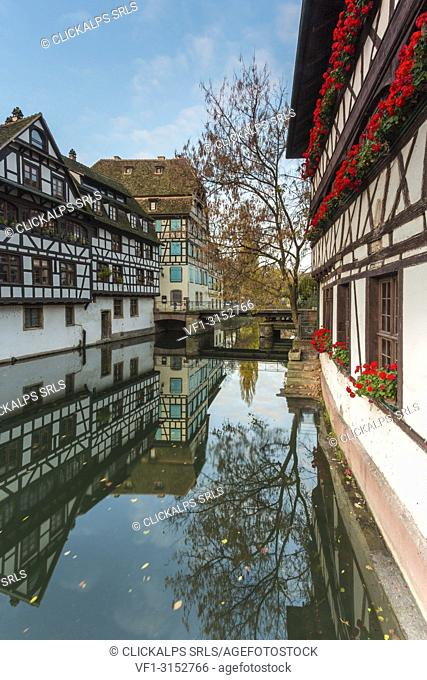 Half-timbered houses and canal in Petite France, Strasbourg district, Alsace, Grand Est region, Bas-Rhin, France