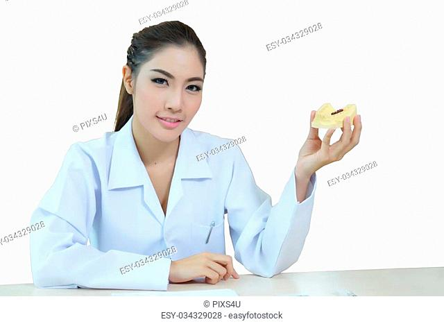 Young beautiful woman dentist holding denture cast model
