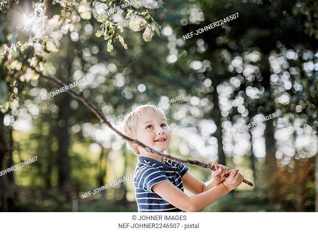Boy playing with branch in forest