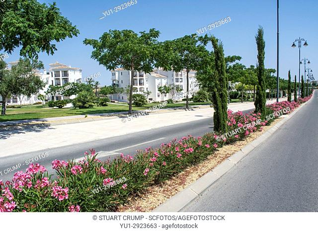Flowers along the entrance road to Hacienda Riquelme Golf Resort in Murcia Spain