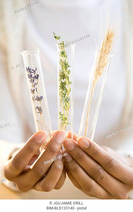 Mixed race woman holding test tubes of herbs