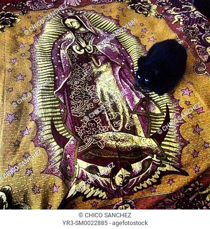 A black cat rests on a bed decorated with an image of Our Lady of Guadalupe in Mexico City, Mexico