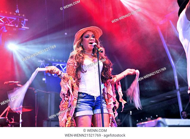 Godiva Festival - Day 2 - Performances Featuring: Rowetta Satchell Where: Coventry, United Kingdom When: 05 Jul 2014 Credit: WENN.com