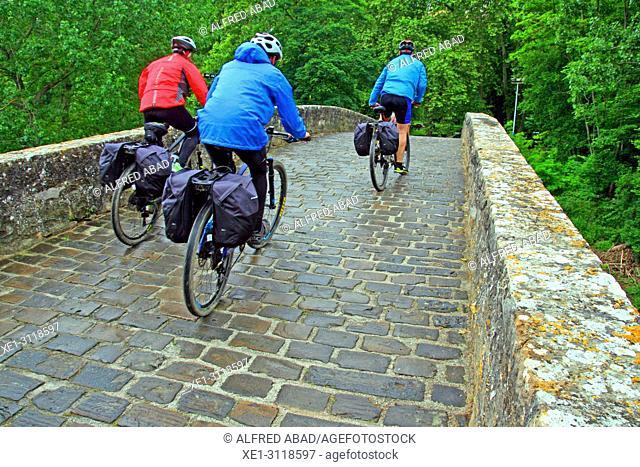Magdalena Bridge, Camino de Santiago, Pamplona, Navarra, Spain
