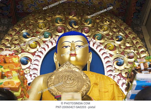 Low angle view of a statue of Buddha in a temple, Namgyal Monastery, McLeod Ganj, Dharamshala, Himachal Pradesh, India