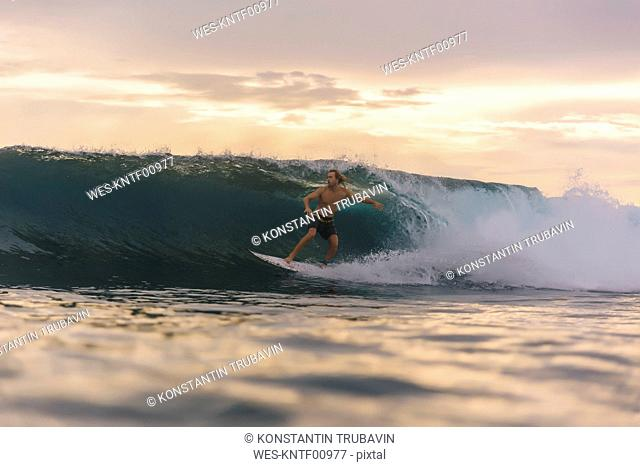 Indonesia, Sumatra, surfer on a wave at sunset