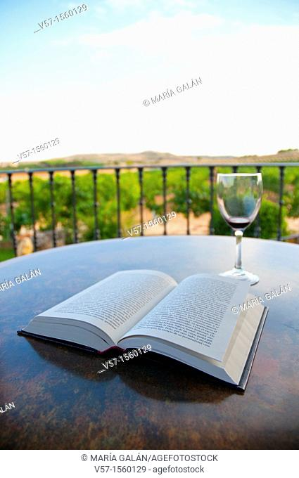 Open book and empty glass of red wine