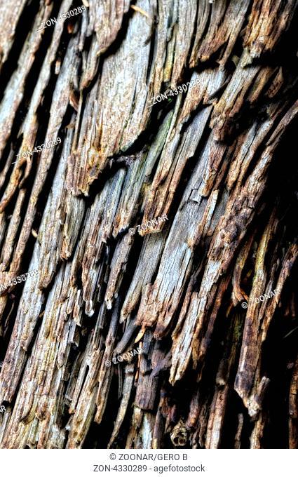 Holzstruktur soft vertical, Soft vertical wood structure
