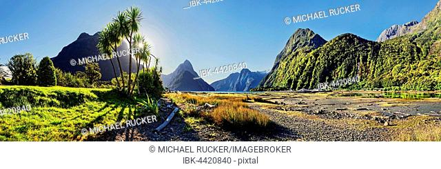 Panorama of Milford Sound, Mitre Peak, palm trees at low tide, Fiordland National Park, Te Anau, South Island, New Zealand