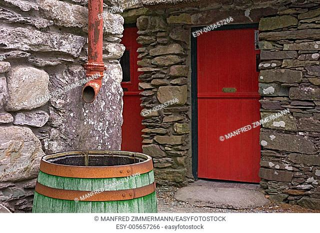 Green rain barrel made of wood with iron hoops under sewer pipe,