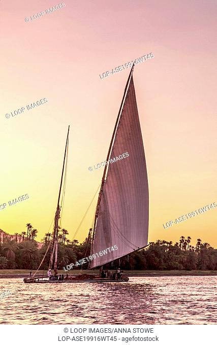 Traditional working transport felucca sails along the Nile near Aswan at sunset