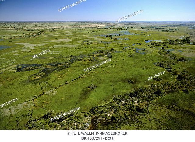 Aerial view, Okavango Delta, Botswana, Africa