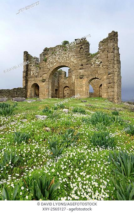 Ruins of the Roman Basilica in ancient Greco-Roman city of Aspendos, southern Turkey