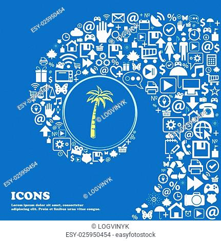 Palm symbols. Nice set of beautiful icons twisted spiral into the center of one large icon. Vector illustration