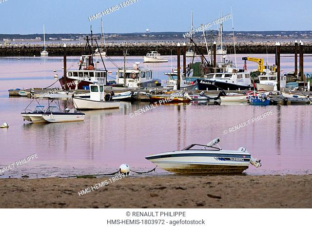 United States, Massachusetts, Cape Cod, Provincetown, harbor and fishing boats at sunset