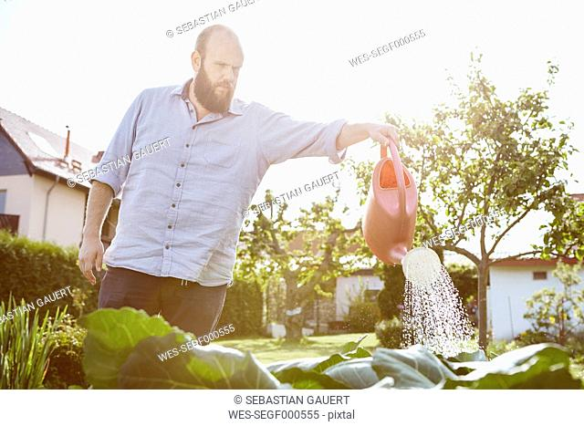 Young man working in garden, watering with watering can