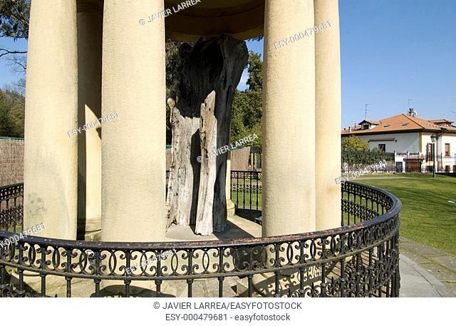 Old tree of Gernika, Casa de Juntas (Meeting house), Gernika. Biscay, Euskadi, Spain