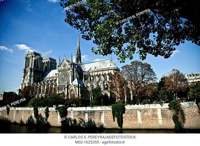 Notre Dame Cathedral, Paris, Ile de France, France, Europe