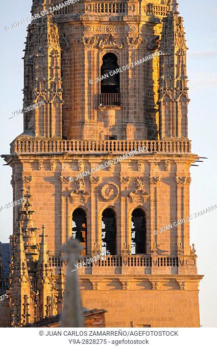 Salamanca Cathedrals Bells Tower from Plaza Mayor XVIth to XVIIIth centuries, Salamanca, UNESCO World Heritage, Castilla y Leon, Spain