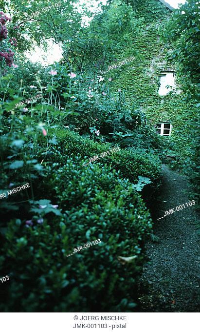Intergrown house in a garden