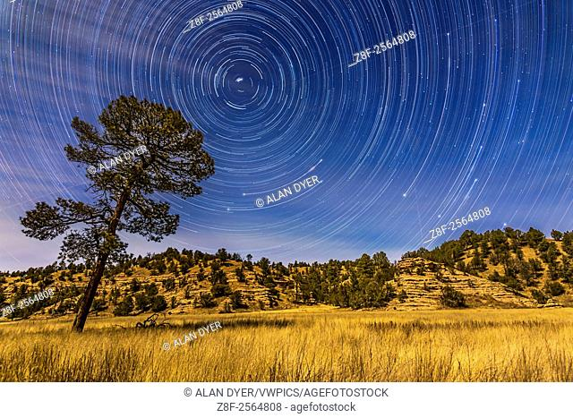 Circumpolar star trails over the moonlit Mimbres Valley near Lake Roberts in the Gila National Forest, in southern New Mexico