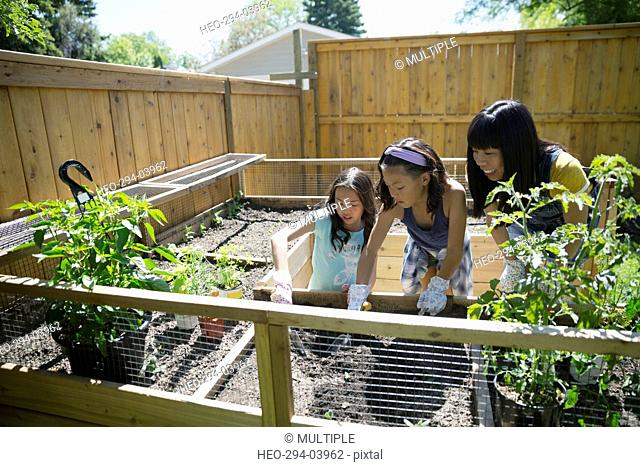 Mother and daughters gardening in sunny backyard