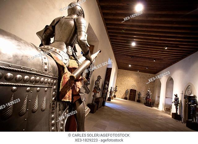 Sala del Palacio Viejo, Alcazar, Segovia, Castile-Leon, Spain