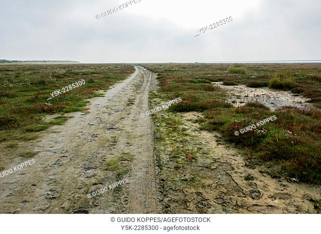 Schiermonnikoog, Netherlands. Path of sand through a conservated nature area between land and north sea