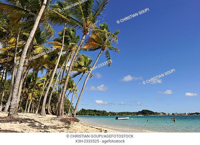 La Caravelle beach, Sainte-Anne, Grande-Terre, Guadeloupe, overseas region of France, Leewards Islands, Lesser Antilles, Caribbean