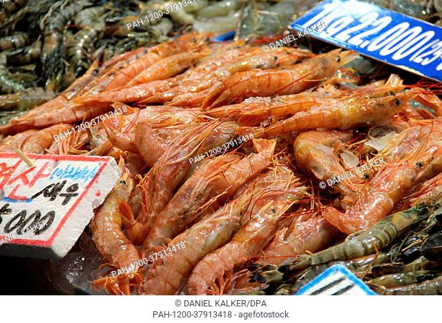 South Korea: Noryangjin Fisheries Wholesale Market, Seoul | usage worldwide. - Seoul/Republic of Korea