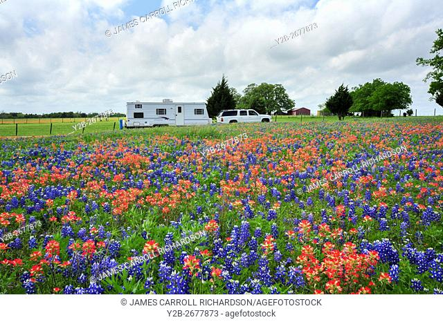 Bluebonnets and Indian paintbrush in Texas Hill Country with RV, USA