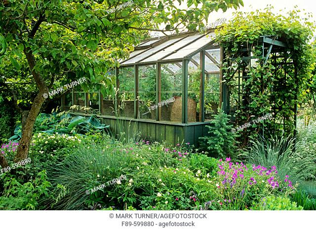 Greenhouse framed by dogwood, grapes, perennials (Cornus florida cv.; Vitis californica; Helictotrichon sempervirens; Parahebe perfoliata; Festuca glauca;...