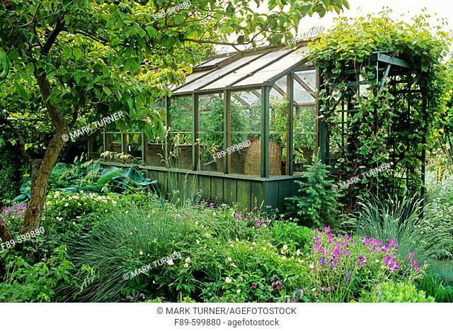 Greenhouse framed by dogwood, grapes, perennials (Cornus florida cv.; Vitis californica; Helictotrichon sempervirens; Parahebe perfoliata; Festuca glauca;...