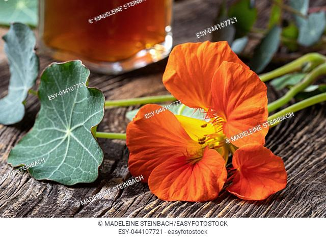 Fresh nasturtium flower, with a bottle of tincture in the background