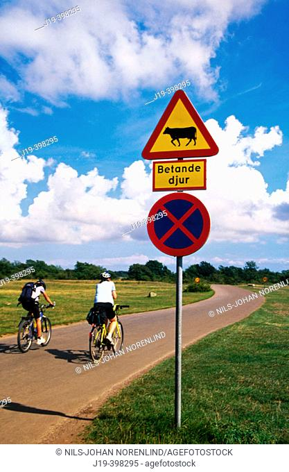 Road sign 'Grazing cows'. Öland. Sweden