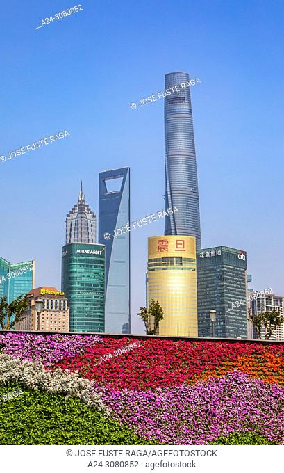 China, Shanghai City, Pudong District, Lujiazui Area, Jin Mao Bldg. ,World Financial Center and Shanghai Tower. hanging flowers