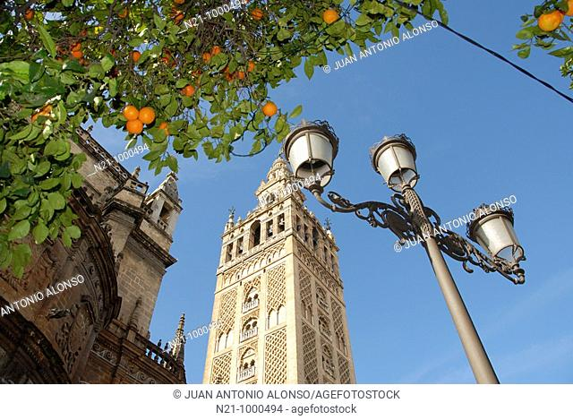 Cathedral with La Giralda Tower. Santa Cruz Quarter, Seville, Andalucia, Spain