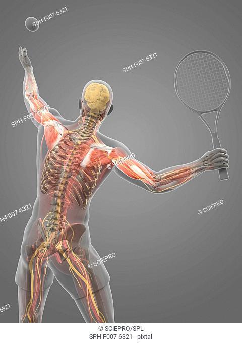 Tennis player, computer artwork