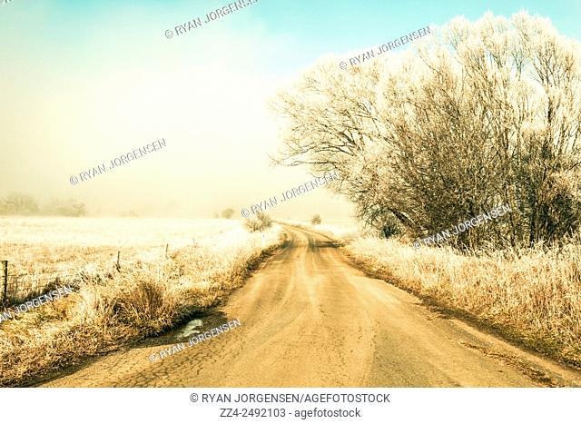 Cold morning scene of a country path leading through a frosted white forest background. Winter road wonderland taken Saint Marys, Tasmania, Australia