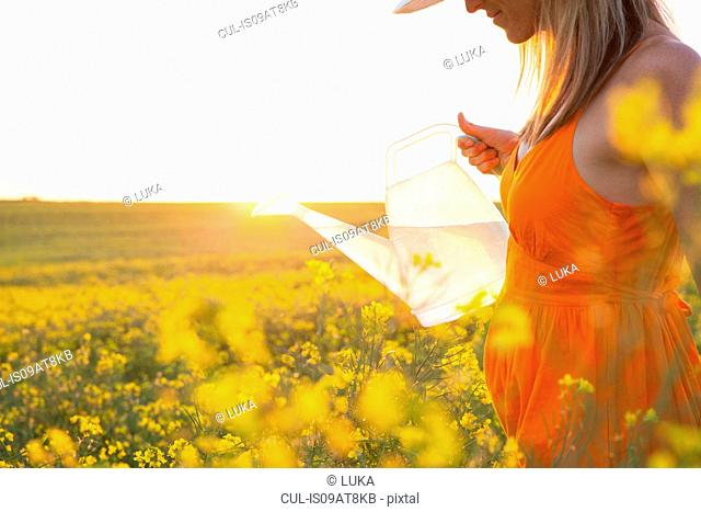 Cropped view of mid adult woman watering canola with transparent watering can