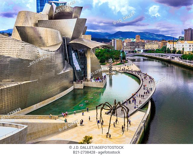 Guggenheim Museum by the Nervion river, Bilbao, Biscay, Basque Country, Spain