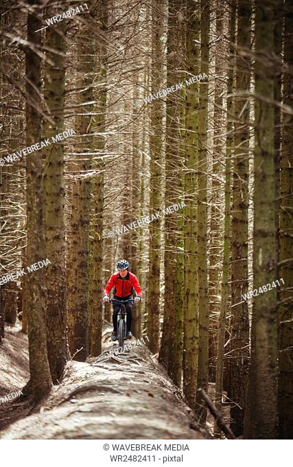 Mountain biker riding on dirt road in woodland