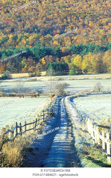 A dirt road with morning autumn frost in Tyringham, Massachusetts