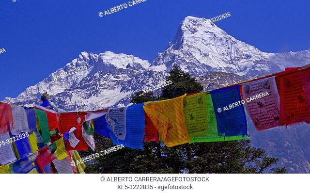 Prayer Flags, Annapurna South, Annapurna Range, Trek to Annapurna Base Camp, Annapurna Conservation Area, Himalaya, Nepal, Asia
