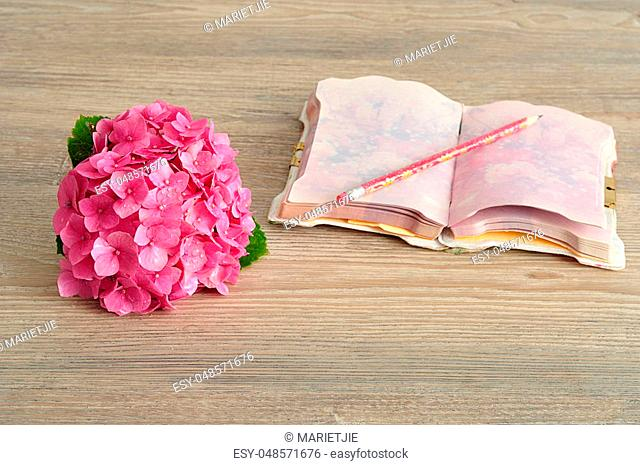 A pink Hydrangea with a notebook and pencil